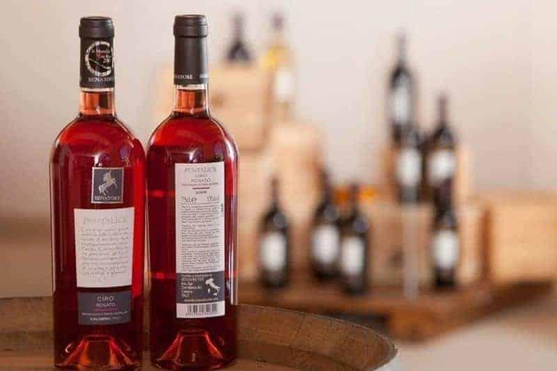 """Rosè aus roten Trauben, durch die """"Weißweinbereitung"""""""