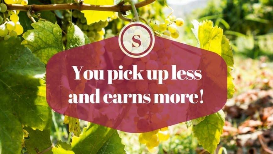 Weniger sammeln und mehr verdienen!