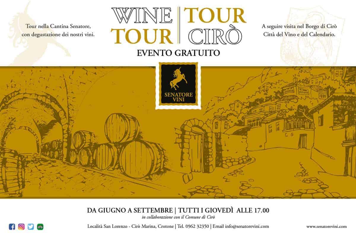 Immagine Wine Tour